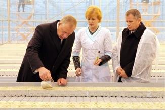 Новгородская администрация на открытии Новгородских теплиц