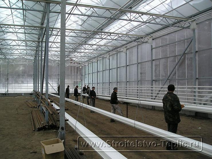 0025 Монтаж подвесных лотков для выращивания томатов в промышленной теплице