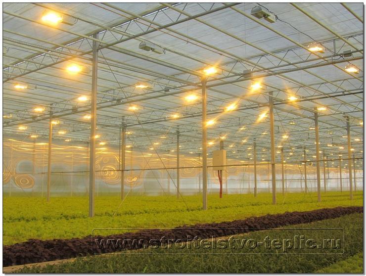 Электродосвечивание рассадно-салатного отделения