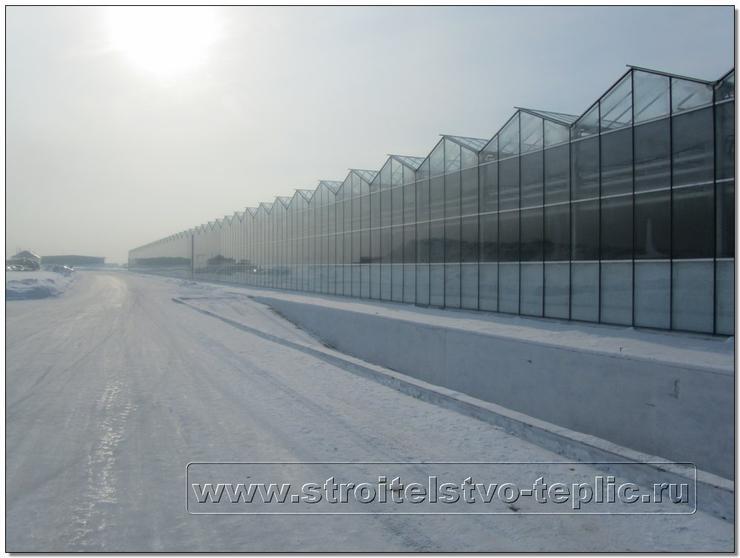 Тепличный комбинат Новосибирский