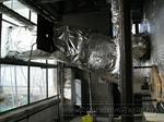 0063 Строительство теплиц Монтаж котельной, конденсора отбора СО2
